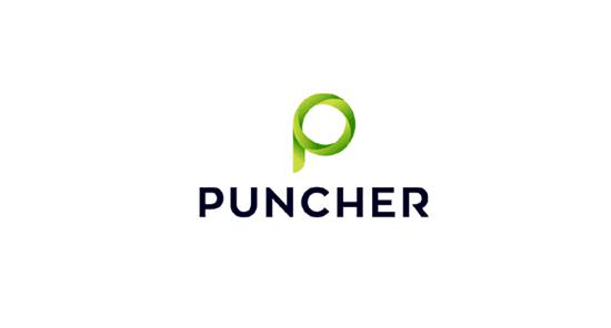 Puncher Stock Rom
